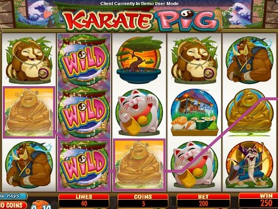 Take a Look at Karate Pig Online Slot Machine